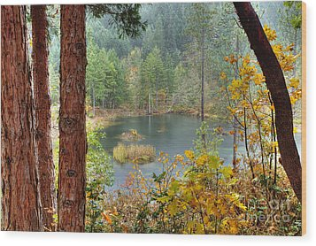 Pond At Golden Or. Wood Print by Jim Adams