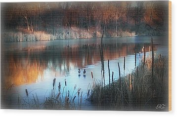 Wood Print featuring the photograph Pond Creek by Michelle Frizzell-Thompson