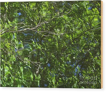 Pond Reflection 3 Wood Print by Janeen Wassink Searles