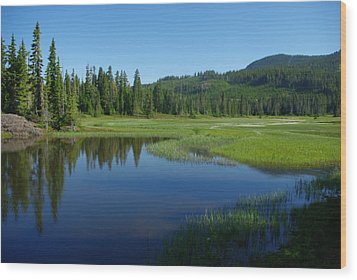 Wood Print featuring the photograph Pond Reflection by Marilyn Wilson