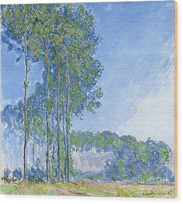 Poplars Wood Print by Claude Monet