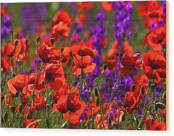 Wood Print featuring the photograph Poppy Field by Emanuel Tanjala