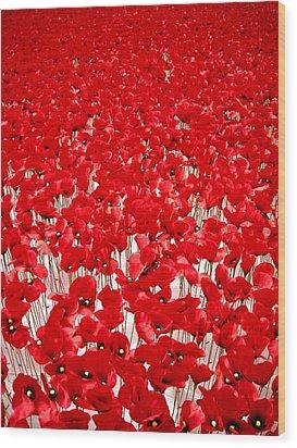 Poppy Meadow ... Wood Print by Juergen Weiss