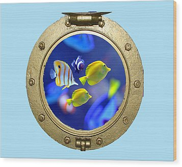 Porthole Of Fish Wood Print