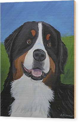Portrait Of A Bernese Mountain Dog Wood Print