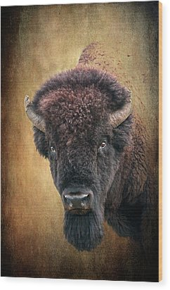Portrait Of A Buffalo Wood Print