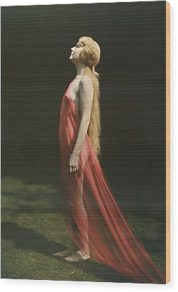 Portrait Of A Nude Woman Draped Wood Print by Franklin Price Knott