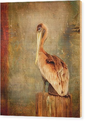 Wood Print featuring the photograph Portrait Of A Pelican by Karen Lynch