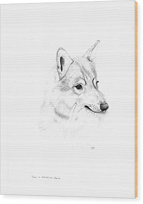 Portrait Of A Wolf Wood Print by Peter Edward Green