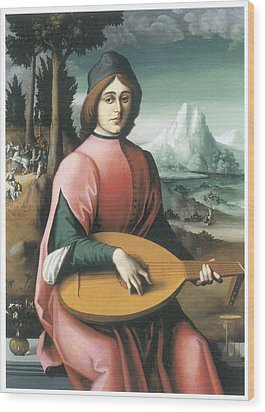 Portrait Of A Young Man With A Lute Wood Print by Bachiacca