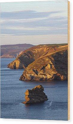 Portreath North Cliffs Wood Print by Ken Brannen
