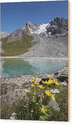 Postcard From Alpes Wood Print by Mircea Costina Photography