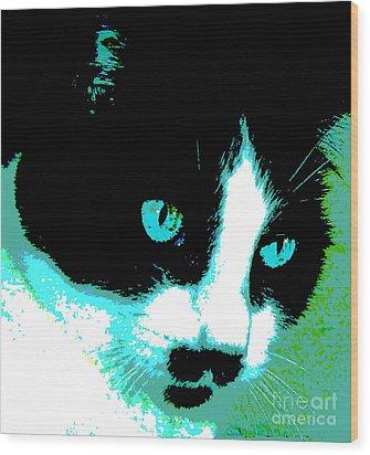 Poster Kitty Wood Print by Elinor Mavor