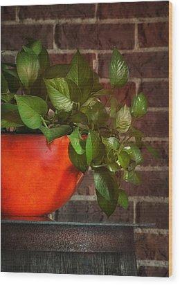 Pot Of Greens Wood Print by Brenda Bryant