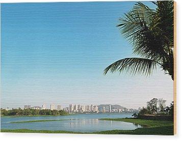 Powai - Suburb Of Mumbai Wood Print by Ixefra