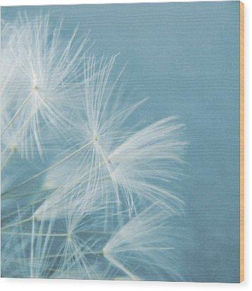 Powder Blue Wood Print by Sharon Lisa Clarke