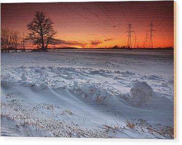 Powerlines In Winter Wood Print by Cale Best