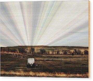 Prairie Wood Print by Clarice  Lakota