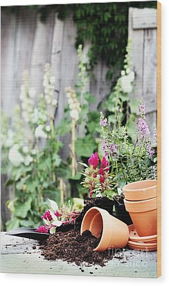Preparing Flower Pots Wood Print by Stephanie Frey