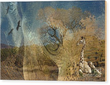 Wood Print featuring the photograph Preservation by Vicki Pelham