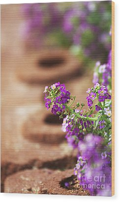 Pretty Flowers Wood Print by Patty Malajak