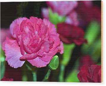 Pretty In Pink Wood Print by Sandi OReilly