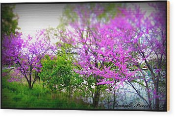 Wood Print featuring the photograph Pretty In Pink Spring Blossoms by Danielle  Parent