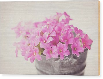 Pretty Pink Wood Print by SKCPhotography