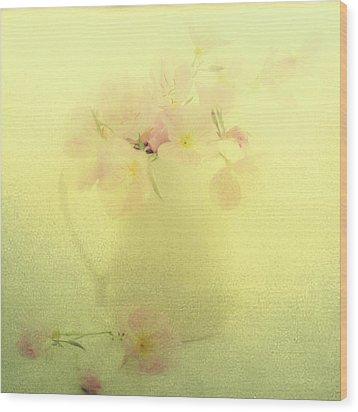 Primrose In Pastel Wood Print by Linde Townsend