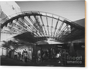 Princes Mall Princes Street Edinburgh Scotland Uk United Kingdom Wood Print by Joe Fox