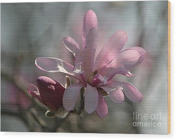 Pristine Pastels Wood Print by Living Color Photography Lorraine Lynch