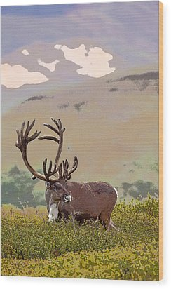 Profile Of A Bull Caribou- Abstract Wood Print by Tim Grams