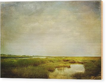 Wood Print featuring the photograph Promise Of Twilight by Karen Lynch