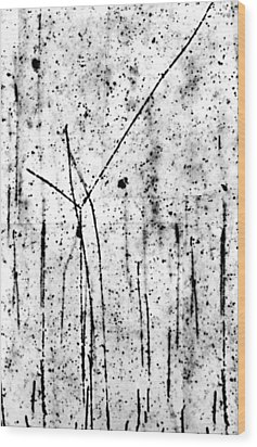 Proton/proton Collision In Photo Emulsion Wood Print by C. Powell, P. Fowler & D. Perkins