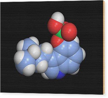 Psilocybin Hallucinogen Molecule Wood Print by Dr Tim Evans