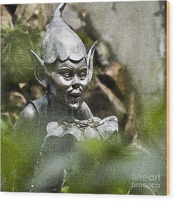 Puck In The Garden Wood Print by Heiko Koehrer-Wagner