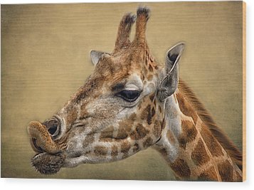 Pucker Up Wood Print by Fiona Messenger