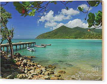 Puerto Manuabo 1 - Puerto Rico Wood Print by JH Photo Service