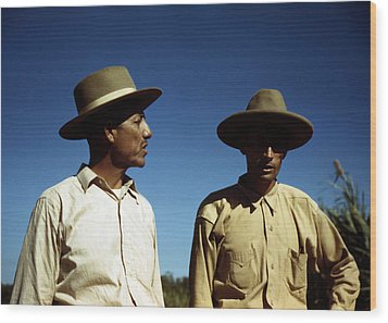 Puerto Rico. Sugar Cane Workers Wood Print by Everett
