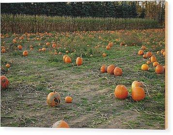 Pumpkin Patch Wood Print by LeeAnn McLaneGoetz McLaneGoetzStudioLLCcom