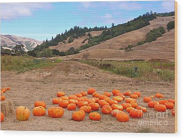 Wood Print featuring the photograph Pumpkins Of Marin by K L Kingston