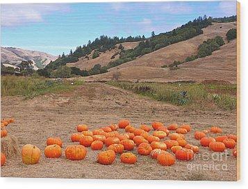 Pumpkins Of Marin Wood Print by K L Kingston