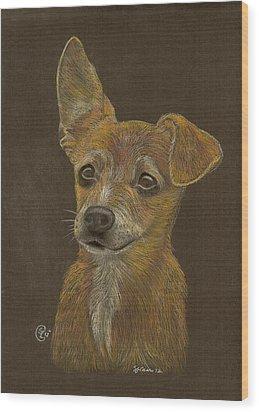 Pup Wood Print by Stephanie L Carr