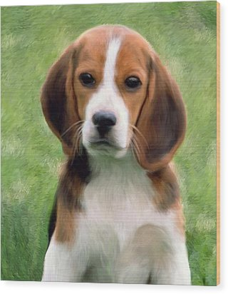 Puppy Portrait Wood Print by Snake Jagger