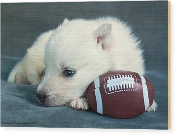 Puppy With Football Wood Print
