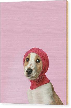Puppy With Hat Wood Print by Retales Botijero