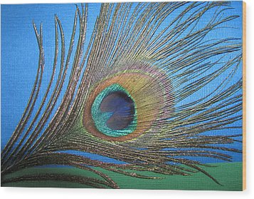 Purdy As A Peacock Wood Print by Kathy Clark