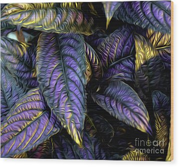 Purple Beauties Wood Print by Anne Raczkowski