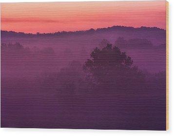 Purple Dawn Wood Print by Matt  Trimble