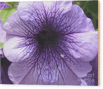 Purple Flower Wood Print by Portia Petty